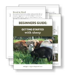 Getting Started with Sheep - A Beginners Guide
