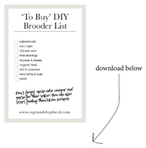to buy chick brooder checklist