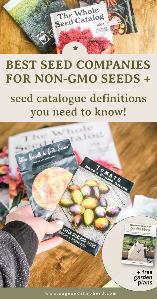 Best seed companies for non-gmo seed + seed catalogue definitions you need to know