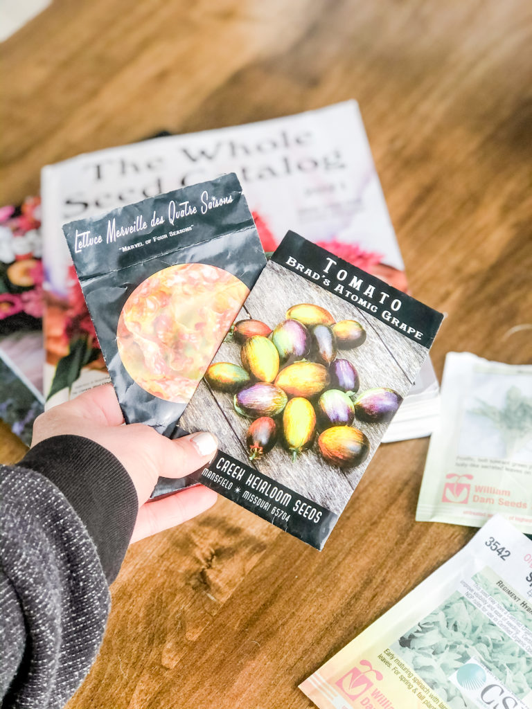 best places to order seeds and seed catalogue definitions you need to know