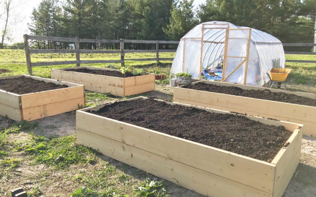 how to homestead - build raised garden beds