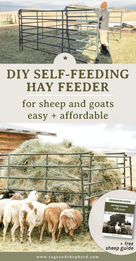 DIY self feeding hay feeder for sheep