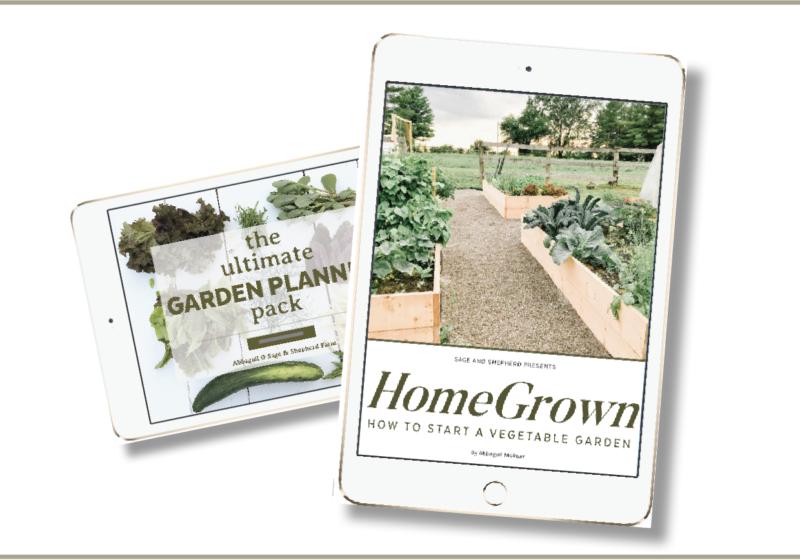 how to start a vegetable garden ebook