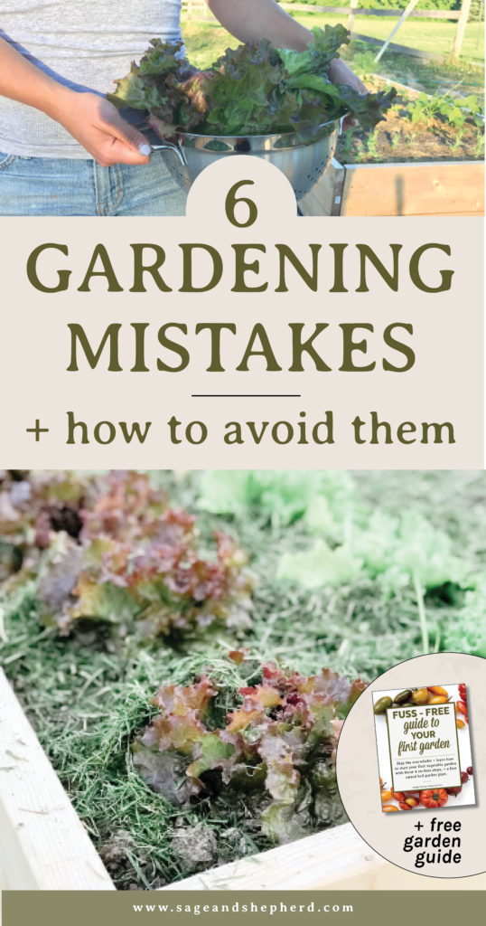 top 6 gardening mistakes and how to avoid them