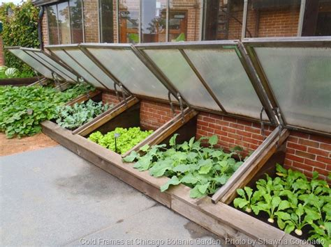 what is a cold frame