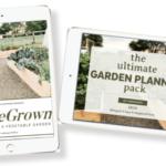 how to start a vegetable garden and garden planner